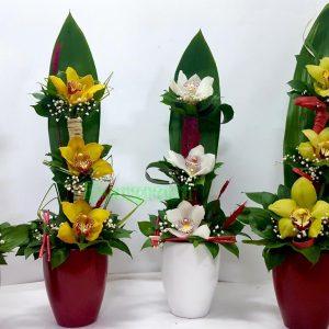 Aranžmani za slave – 001 Aranžman orhideja