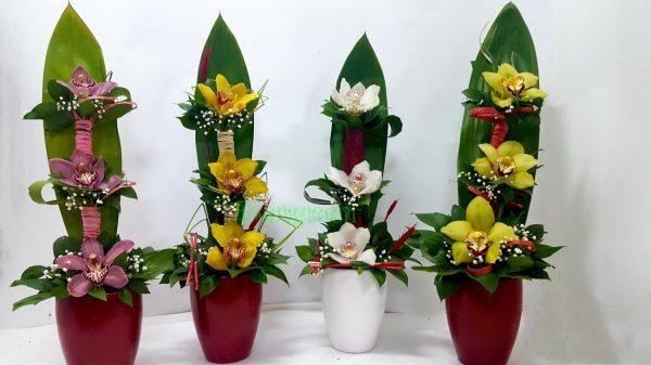 Aranzmani za slave 001 orhideja u keramici