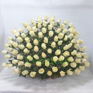 Korpa 101 ruža – 006