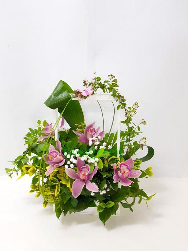 Aranzmani za rodjenja 002 orhideje u korpi