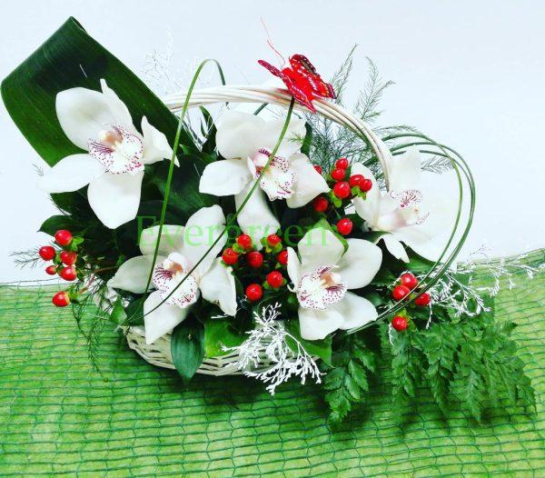 Aranzmani za rodjenja 004 orhideje u korpi