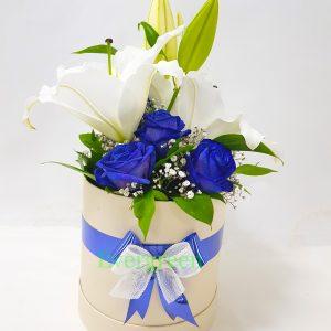 Aranžmani u kutiji – Flower Box – 025 Plave ruže